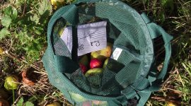 Apple collecting bag 2