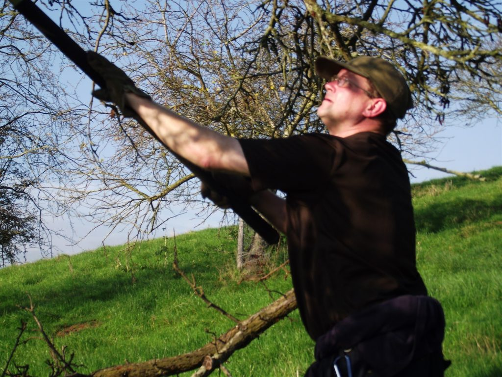 Restoration Pruning at Tyler House
